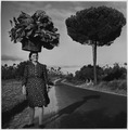 Portugal. A peasant woman carries her truck-garden produce on her head - and the load looks as big as a small tree - NARA - 541750.tif