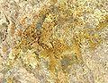 Poughite-214970.jpg