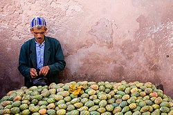 Prickly pear Tunas  for sale in Morocco
