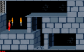 Prince of Persia 1 - MS-DOS - Mod (2).png