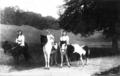 Princes in Coburg 1913.png