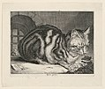 Print, The Big Cat, 1657 (CH 18608755).jpg
