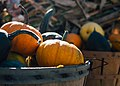 Pumpkins in baskets (Unsplash).jpg