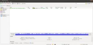 QBittorrent - Image: Q Bittorrent v 3.1.8