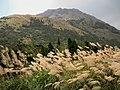 Qixing Mountain 七星山 - panoramio.jpg