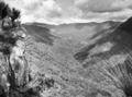 Queensland State Archives 403 Looking from Moonlight Crag across the gorge of the Albert River Lamington National Park Beaudesert Shire September 1933.png