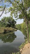 Río Henares (RPS 09-09-2015) Alcalá de Henares, zona de El Val.jpg