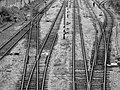 Rails (160425063).jpeg