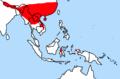 Rattus nitidus distribution.png