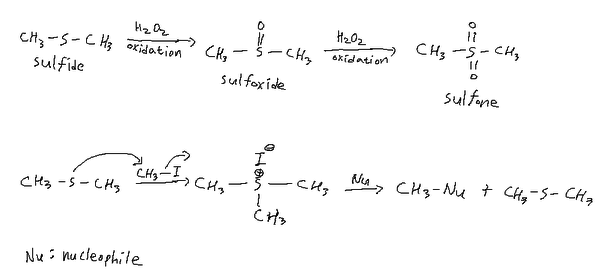 Reactions of sulfide.png