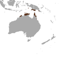Red-cheeked Dunnart area.png