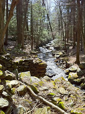Remains of old mill dam on Beaverdam Brook taken from northern end of foot bridge..jpg
