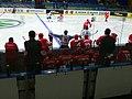 Rep. of Korea vs. Poland at 2017 IIHF World Championship Division I 02.jpg