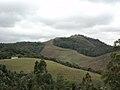 Reserva Biológica do Tamboré.jpg