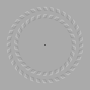An optical illusion. The two circles seem to move when the viewer's head is moving forwards and backwards while looking at the black dot.