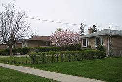Residences in Rexdale