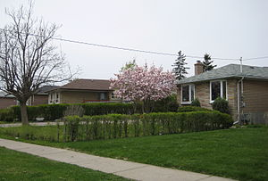 Rexdale - Image: Rexdale houses
