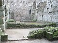 Richard II's Palace within Portchester Castle - geograph.org.uk - 1085778.jpg