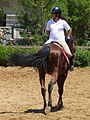 Riding a Horse Backwards 1110818.jpg