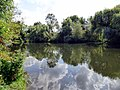 River Great Ouse, Bedford (41598770421).jpg