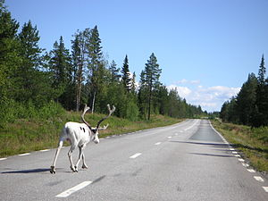 European route E45 - Image: Road E45 between Sorsele and Slagnäs