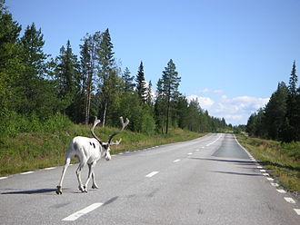European route E45 - Image: Road E45 between Sorsele and Slagnäs