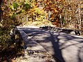 Roadway PA240011 McCormicks Creek.jpg