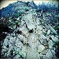 Rocky Path - panoramio.jpg