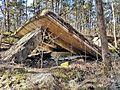 """Ruinen im Naturschutzgebiet """"Besenhorster Sandberge und Elbsandwiesen"""" (2).jpg"""