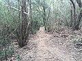 Ruta NAYL 3 - panoramio.jpg