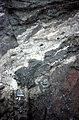S of Mt Jackson multiple tuffisite sill in gabbro breccia.jpg