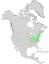 Salix sericea range map 0.png