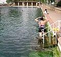San Soloman Springs -- Pool.jpg