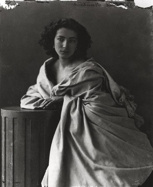 Photographs of the Famous by Felix Nadar