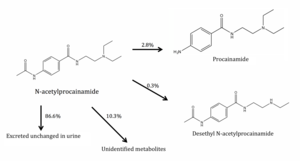 Acecainide - Reaction of acecainide