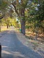 Scully Ranch--street entrance view of very long driveway.jpg