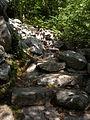 Sentier Le Belvédère Hautes-Gorges-de-la-Rivière-Malbaie 01.JPG