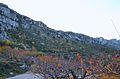 Serra de la Foradà, la Vall de Gallinera, a la tardor.JPG