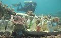 Shark shaped bottle reef with planted coral.jpg