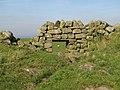 Sheep hole in Hadrian's Wall - geograph.org.uk - 578423.jpg