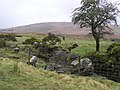 Sheskinawaddy Townland - geograph.org.uk - 722692.jpg