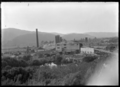 Silverstream Brick and Tile Company factory, 1930. ATLIB 314698.png