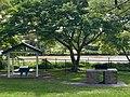 Sir John Chandler Park at Indooroopilly, Queensland, BBQ.jpg