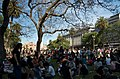 Sitting under the Jacaranda (2995729448).jpg