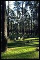 Skogskyrkogården - KMB - 16000300018396.jpg