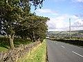 Slaithwaite Road, Meltham - geograph.org.uk - 529292.jpg