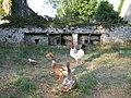 Slate troughs set in farmyard wall, Cilshafe Fawr - geograph.org.uk - 209466.jpg