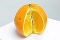Sliced orange whitescreen.jpg
