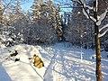 Snow (8253995909).jpg