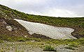 Snow patch on cliff near Firth River, Ivvavik National Park, YT.jpg